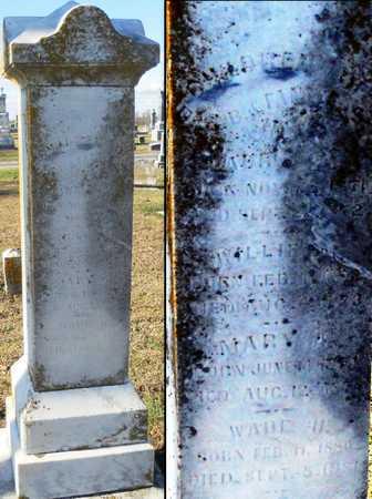 HAWKINS, WADE H - Pike County, Missouri | WADE H HAWKINS - Missouri Gravestone Photos