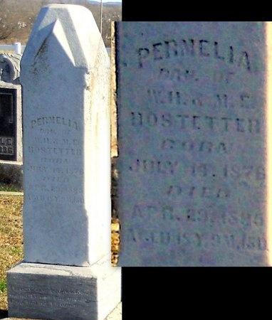 HOSTETTER, PERMELIA - Pike County, Missouri | PERMELIA HOSTETTER - Missouri Gravestone Photos