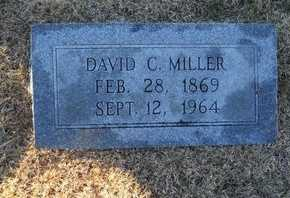 MILLER, DAVID CARLTON - Pike County, Missouri | DAVID CARLTON MILLER - Missouri Gravestone Photos