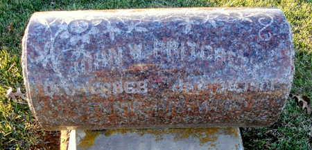 PRITCHETT, JOHN WILL - Pike County, Missouri | JOHN WILL PRITCHETT - Missouri Gravestone Photos