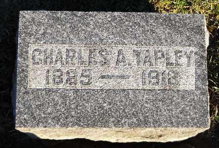 TAPLEY, CHARLES A - Pike County, Missouri | CHARLES A TAPLEY - Missouri Gravestone Photos
