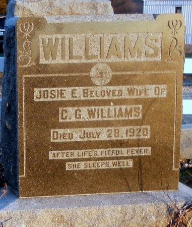 WILLIAMS, JOSIE E - Pike County, Missouri | JOSIE E WILLIAMS - Missouri Gravestone Photos