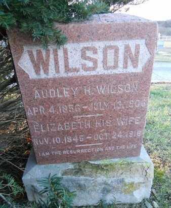 WILSON, AUDLEY H - Pike County, Missouri | AUDLEY H WILSON - Missouri Gravestone Photos