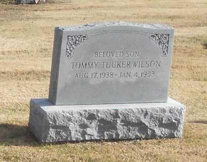 "WILSON, THOMAS TUCKER ""TOMMY"" - Pike County, Missouri | THOMAS TUCKER ""TOMMY"" WILSON - Missouri Gravestone Photos"