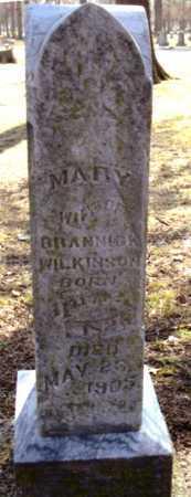WILKINSON, MARY - Polk County, Missouri | MARY WILKINSON - Missouri Gravestone Photos
