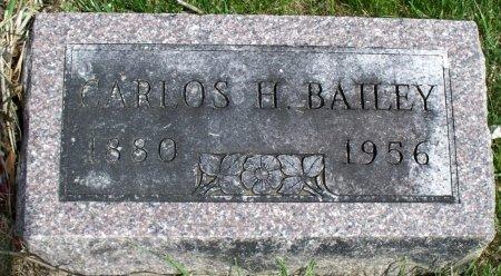 BAILEY, CARLOS HAMILTON JR. - Schuyler County, Missouri | CARLOS HAMILTON JR. BAILEY - Missouri Gravestone Photos