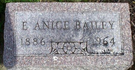 SHINN BAILEY, ANICE ELIZA JANE - Schuyler County, Missouri | ANICE ELIZA JANE SHINN BAILEY - Missouri Gravestone Photos