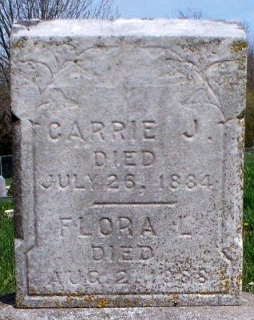 TICE, CARRIE J - Schuyler County, Missouri   CARRIE J TICE - Missouri Gravestone Photos