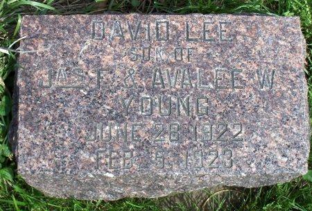YOUNG, DAVID LEE - Schuyler County, Missouri   DAVID LEE YOUNG - Missouri Gravestone Photos