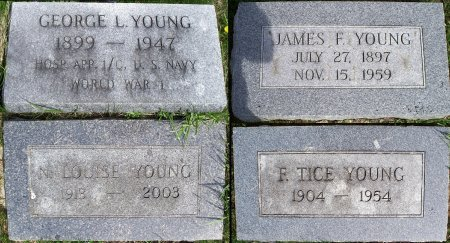 YOUNG, JAMES F - Schuyler County, Missouri | JAMES F YOUNG - Missouri Gravestone Photos