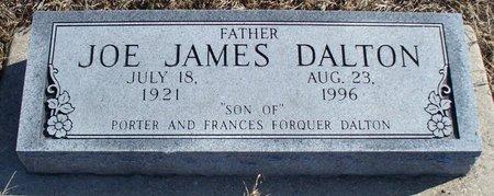 DALTON, JOE JAMES - Scotland County, Missouri | JOE JAMES DALTON - Missouri Gravestone Photos