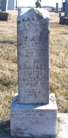 PALMER, ELIZABETH - Scotland County, Missouri | ELIZABETH PALMER - Missouri Gravestone Photos