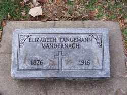 MANDERNACH, ELIABETH - St. Louis County, Missouri | ELIABETH MANDERNACH - Missouri Gravestone Photos