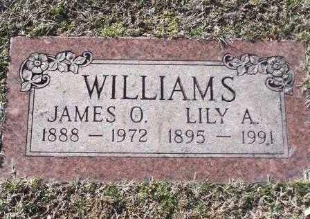 WILLIAMS, LILY A - St. Louis County, Missouri | LILY A WILLIAMS - Missouri Gravestone Photos