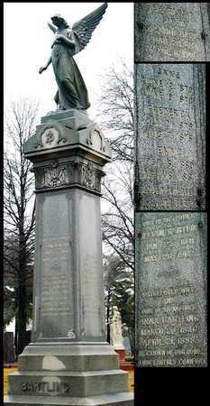 BARTLING, WILLIAM - St. Louis City County, Missouri | WILLIAM BARTLING - Missouri Gravestone Photos