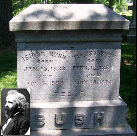 BUSH, ISIDOR - St. Louis City County, Missouri | ISIDOR BUSH - Missouri Gravestone Photos