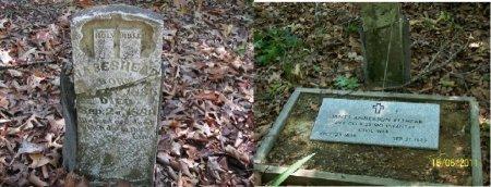 BESHEAR, JAMES ANDERSON - Stone County, Missouri | JAMES ANDERSON BESHEAR - Missouri Gravestone Photos