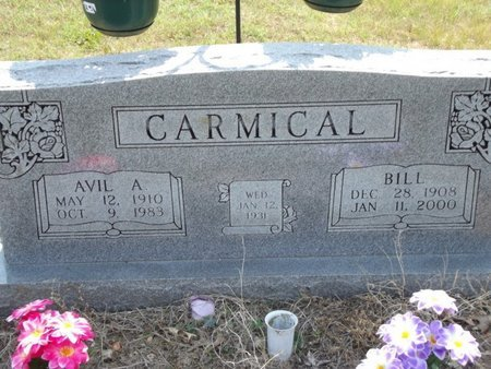 CARMICAL, BILL - Stone County, Missouri | BILL CARMICAL - Missouri Gravestone Photos