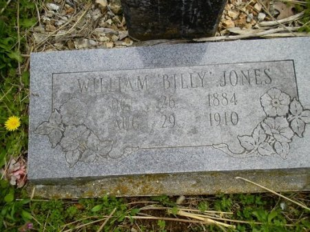 JONES, WILLIAM F. - Stone County, Missouri | WILLIAM F. JONES - Missouri Gravestone Photos
