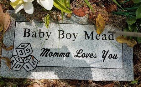 MEAD, INFANT SON - Stone County, Missouri | INFANT SON MEAD - Missouri Gravestone Photos