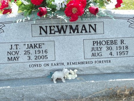 "NEWMAN, J T ""JAKE"" - Stone County, Missouri 