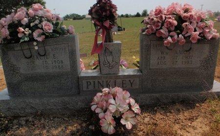 PINKLEY, MACIE E - Stone County, Missouri | MACIE E PINKLEY - Missouri Gravestone Photos