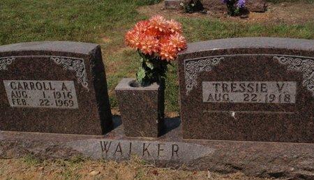 WALKER, CARROLL A - Stone County, Missouri | CARROLL A WALKER - Missouri Gravestone Photos
