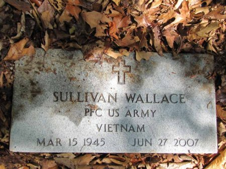 WALLACE, SULLIVAN (VETERAN VIETNAM) - Stone County, Missouri   SULLIVAN (VETERAN VIETNAM) WALLACE - Missouri Gravestone Photos