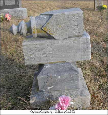 BRANDON, ALECK - Sullivan County, Missouri   ALECK BRANDON - Missouri Gravestone Photos