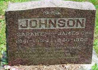 JOHNSON, SARAH - Taney County, Missouri | SARAH JOHNSON - Missouri Gravestone Photos