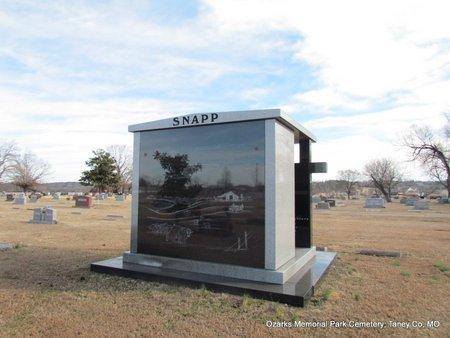 SNAPP, FAMILY PLOT (BACK VIEW) - Taney County, Missouri | FAMILY PLOT (BACK VIEW) SNAPP - Missouri Gravestone Photos