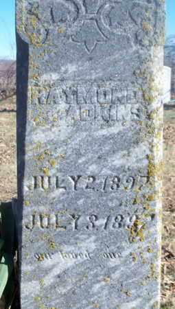 ADKINS, RAYMOND - Texas County, Missouri   RAYMOND ADKINS - Missouri Gravestone Photos