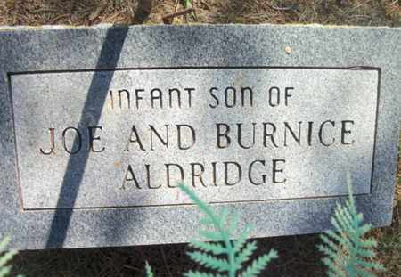 ALDRIDGE, INFANT SON - Texas County, Missouri | INFANT SON ALDRIDGE - Missouri Gravestone Photos