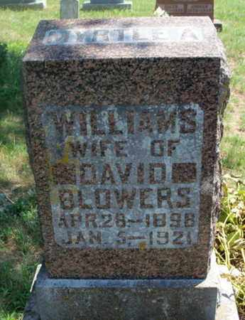 WILLIAMS BLOWERS, MYRTLE A. - Texas County, Missouri   MYRTLE A. WILLIAMS BLOWERS - Missouri Gravestone Photos