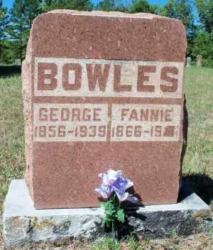 BOWLES, GEORGE - Texas County, Missouri | GEORGE BOWLES - Missouri Gravestone Photos