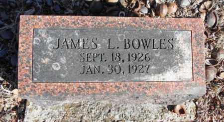 BOWLES, JAMES LYLE - Texas County, Missouri | JAMES LYLE BOWLES - Missouri Gravestone Photos