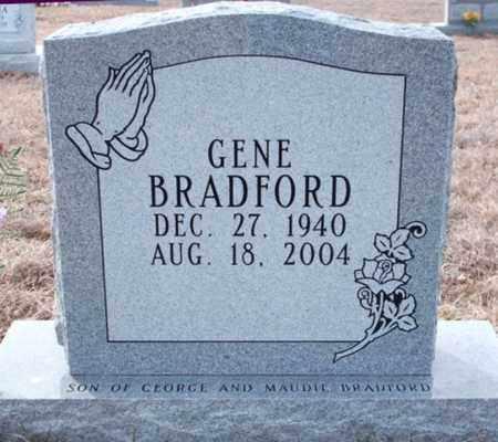 BRADFORD, ROBERT EUGENE - Texas County, Missouri | ROBERT EUGENE BRADFORD - Missouri Gravestone Photos
