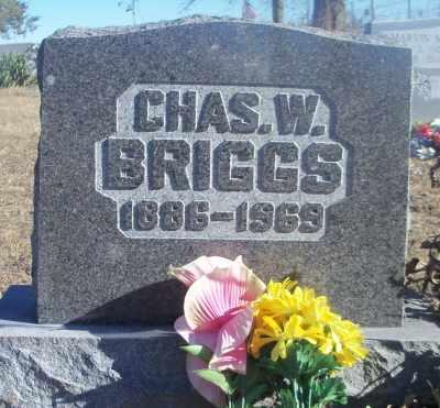 BRIGGS, CHARLES W. - Texas County, Missouri | CHARLES W. BRIGGS - Missouri Gravestone Photos