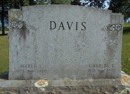 DAVIS, CHARLES EDGAR - Texas County, Missouri | CHARLES EDGAR DAVIS - Missouri Gravestone Photos