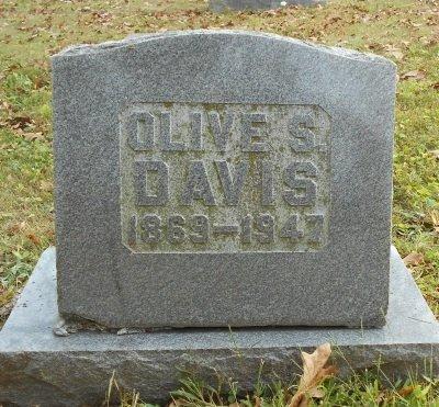 DAVIS, OLIVE - Texas County, Missouri | OLIVE DAVIS - Missouri Gravestone Photos