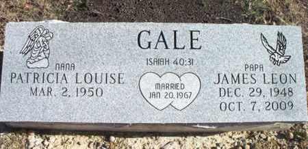 GALE, JAMES LEON - Texas County, Missouri   JAMES LEON GALE - Missouri Gravestone Photos