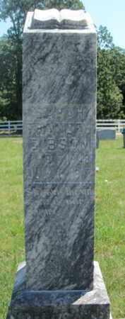 GIBSON, SARAH FRANCES - Texas County, Missouri | SARAH FRANCES GIBSON - Missouri Gravestone Photos