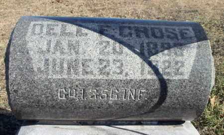 GROSE, DELL FRANKLIN VETERAN WWI - Texas County, Missouri | DELL FRANKLIN VETERAN WWI GROSE - Missouri Gravestone Photos