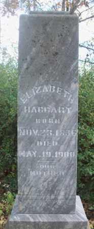 HAGGART, ELIZABETH - Texas County, Missouri | ELIZABETH HAGGART - Missouri Gravestone Photos