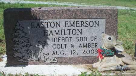 HAMILTON, EASTON EMERSON - Texas County, Missouri | EASTON EMERSON HAMILTON - Missouri Gravestone Photos