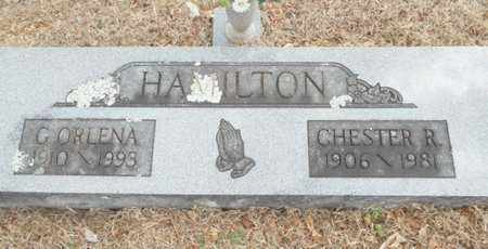 HAMILTON, CHESTER R. - Texas County, Missouri | CHESTER R. HAMILTON - Missouri Gravestone Photos
