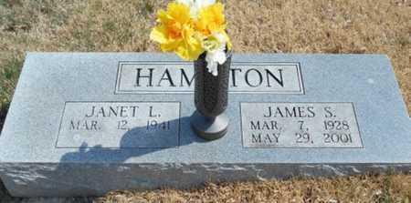 HAMILTON, JAMES SCOTT - Texas County, Missouri | JAMES SCOTT HAMILTON - Missouri Gravestone Photos