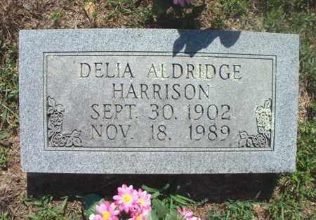 """HAMILTON ALDRIDGE, CORDELIA M. """"DELIA"""" - Texas County, Missouri   CORDELIA M. """"DELIA"""" HAMILTON ALDRIDGE - Missouri Gravestone Photos"""