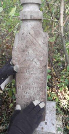 HOPKINS, SAMUEL E. - Texas County, Missouri | SAMUEL E. HOPKINS - Missouri Gravestone Photos