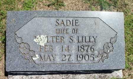 LILLY, SADIE - Texas County, Missouri | SADIE LILLY - Missouri Gravestone Photos